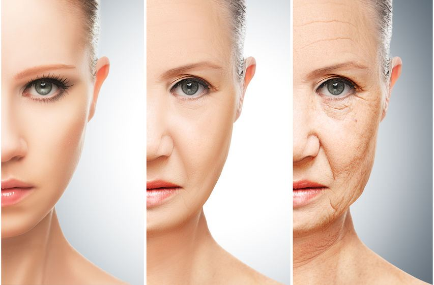 Woman's face showing stages of aging from young to older.